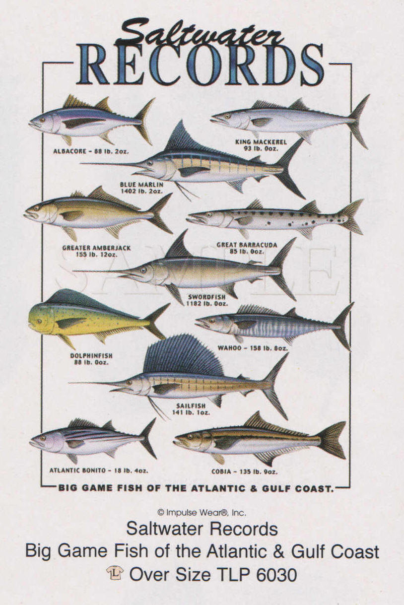 Saltwater game fish for How to make saltwater for fish