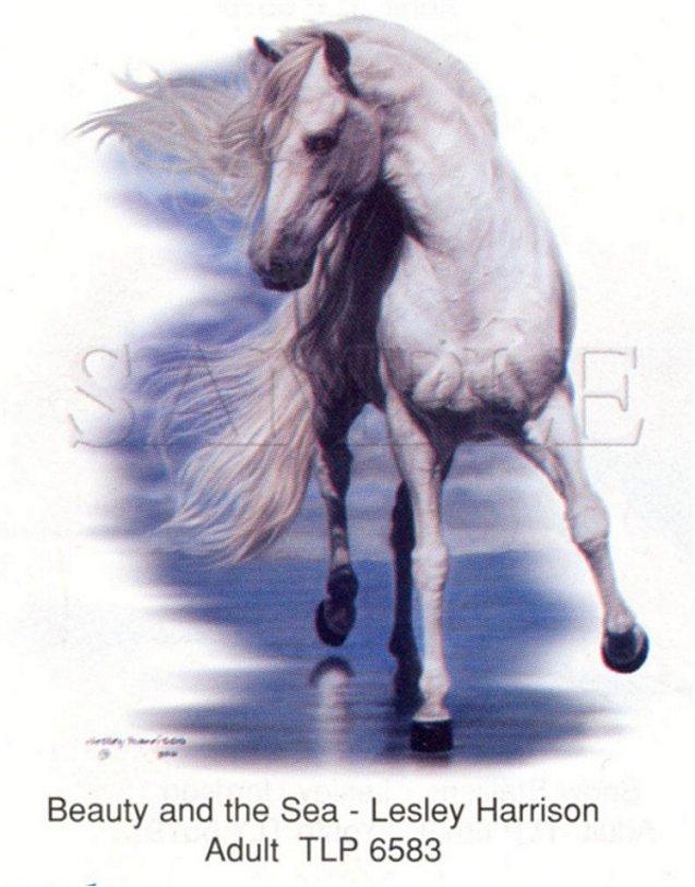 El juego de las imagenes-http://www.wrinkydinks.com/yahoo/horses/6583.jpg